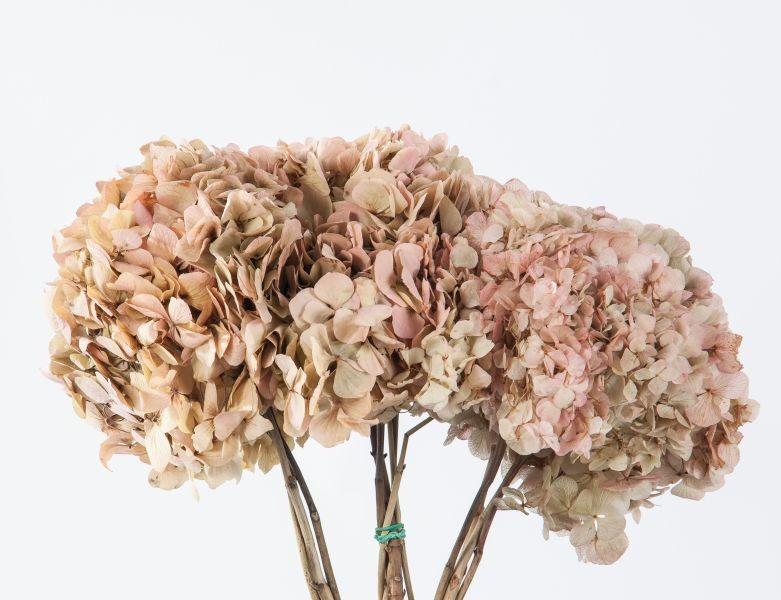 composizione-floreale